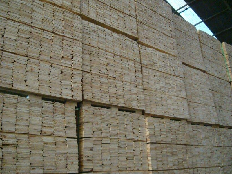 Pine wood imported