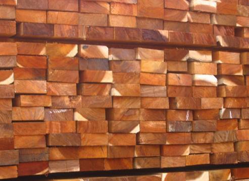 Acacia Wood Drying
